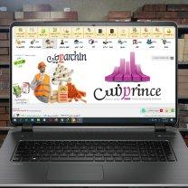 نرم افزار حسابداری پرنس نسخه مصالح ساختمانی (پرچین)
